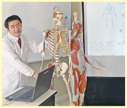 解剖生理学画像